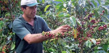 Fairtrade-Produkte