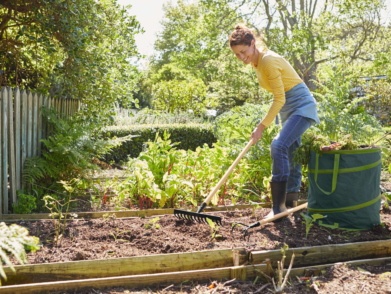 Gartengestaltung Ideen Tipps und Anregungen Lidl