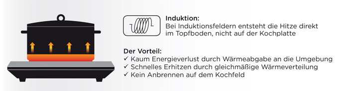 Induktion mit Text.jpg